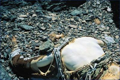 Ciało Georga Mallory'ego