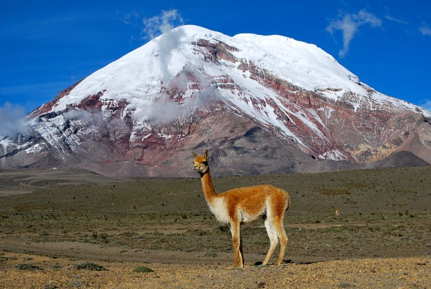 Mount Chimborazo (fot. David Torres Costales)