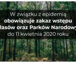 Tymczasowy zakaz wstępu do lasów i Parków Narodowych