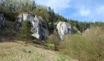 Dolina Kobylańska (fot. wspinanie.pl)