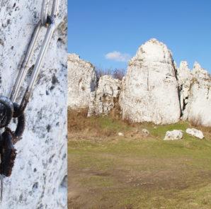 Jedno z wielu stanowisk zanieczyszczonych przez gówniarza na Wzgórzu 502 (fot. z wizji lokalnej wykonanej przez Pawła Koczura, Artka Maślankę, Michała Włodarczyka)